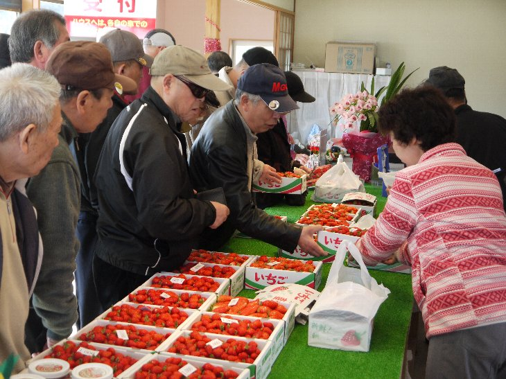 和田観光苺園受付・直売所で、朝摘みいちご