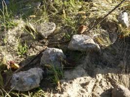 高見公園で掘り起こされた無線塔の名残