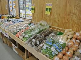 全国から集めれられた野菜