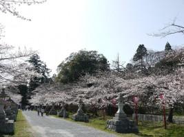 20130409[相馬市]馬陵公園 神社参道