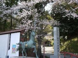 20130409[相馬市]馬陵公園 相馬中村神社