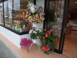 店の前の花