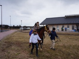 楽しそうに乗馬体験する様子