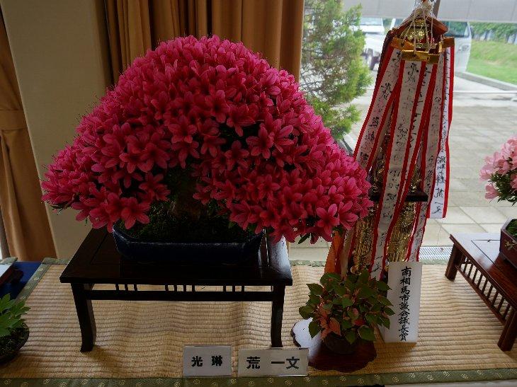 20140609t_haramachi_satsuki010