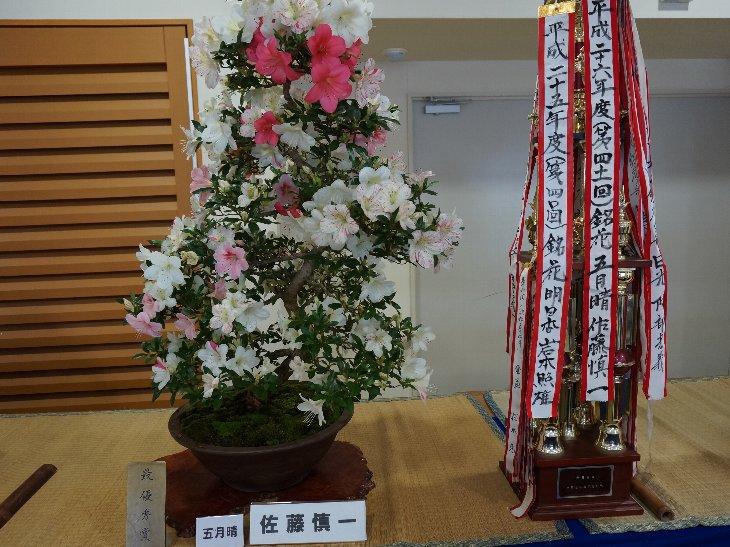 20140609t_haramachi_satsuki017