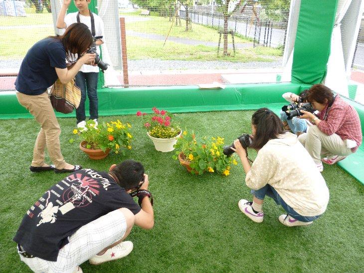 植物の接写②