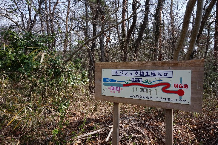東ヶ丘公園