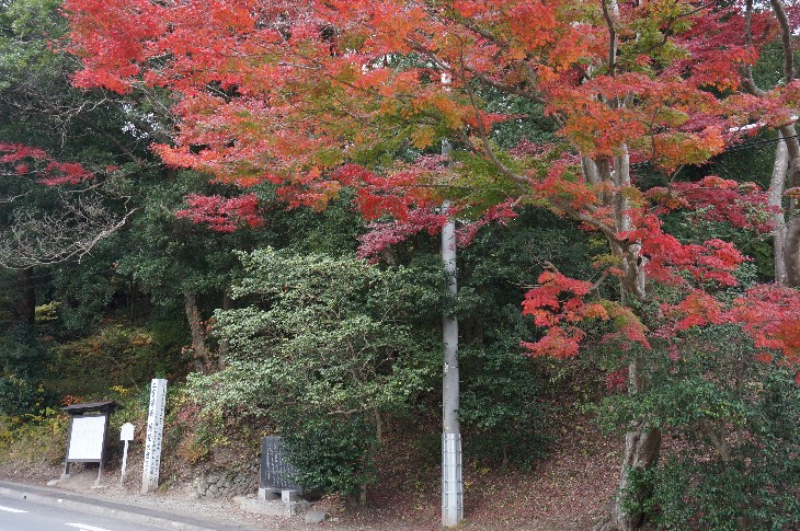 愛宕山史跡の紅葉