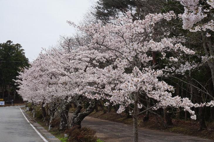 天満宮神社