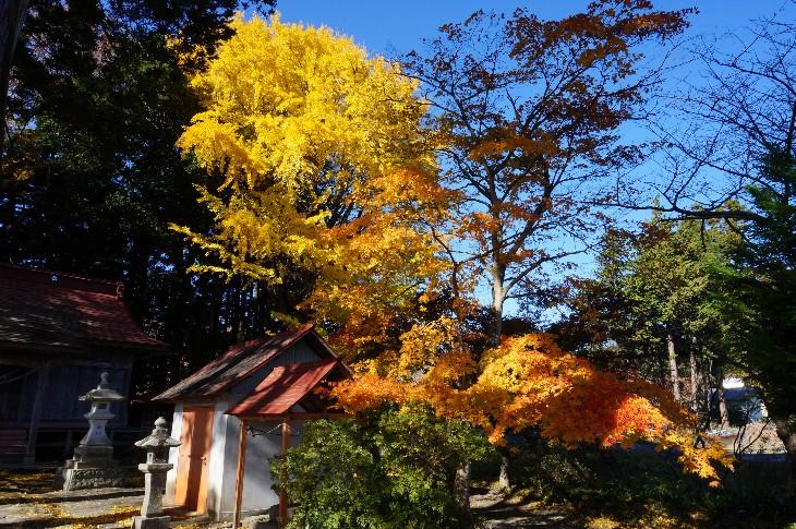 大槻神社の紅葉