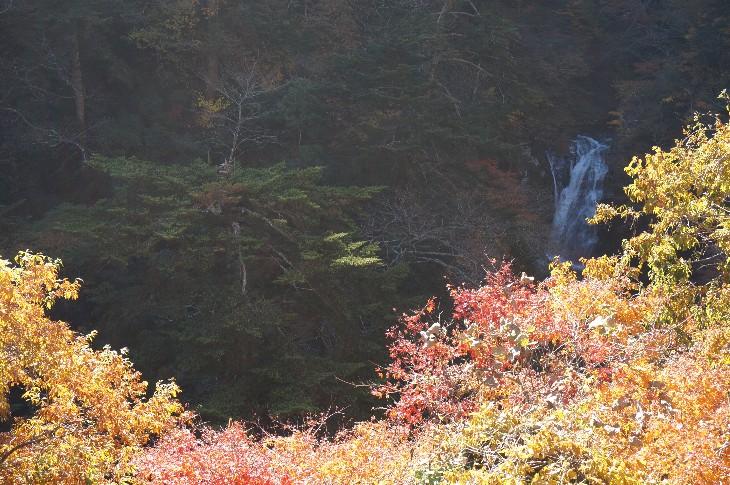 浅見川渓谷・大滝