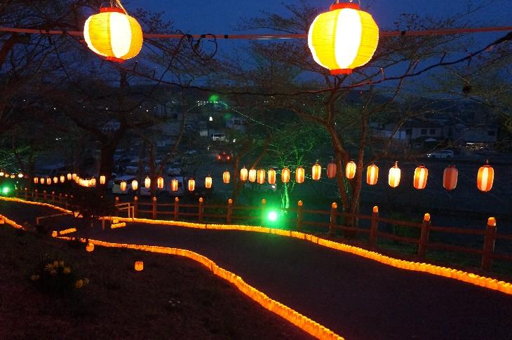 桜並木ライトアップ