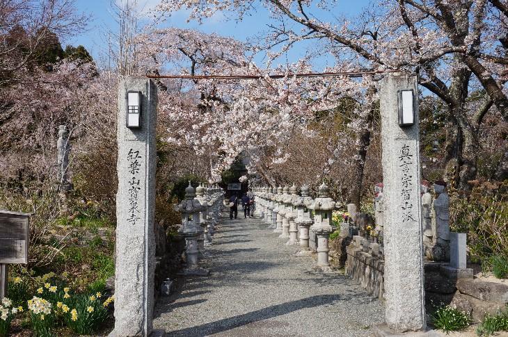 紅葉山 宝泉寺