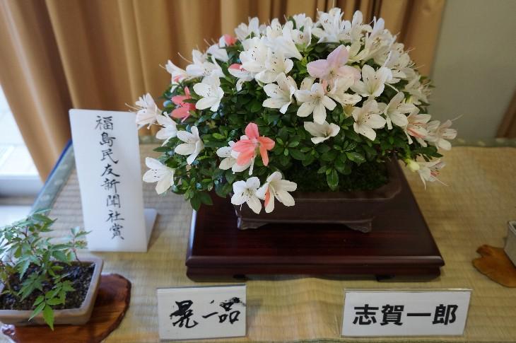 極小の部:福島民友新聞社賞