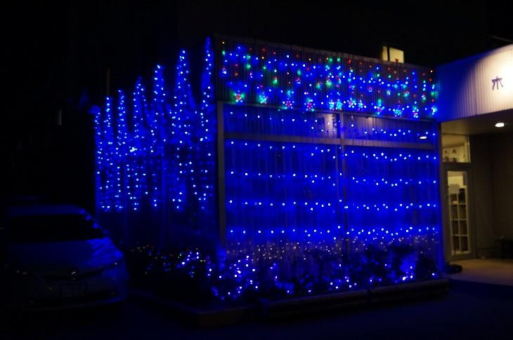 チームカモン『富岡の夜桜』
