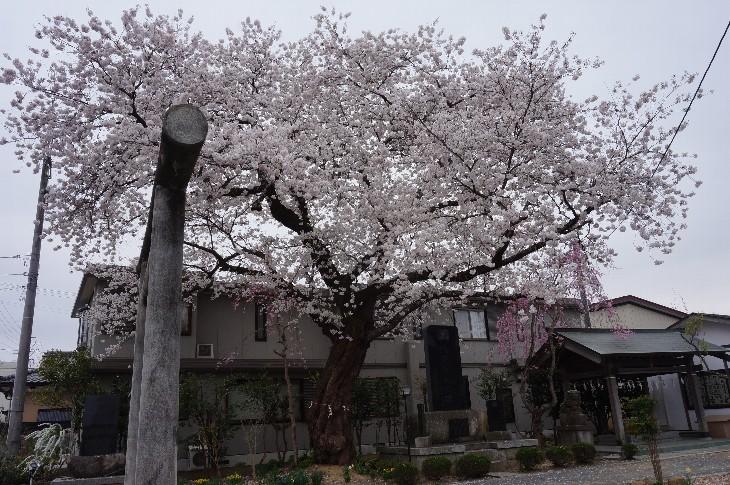 原町区三嶋神社