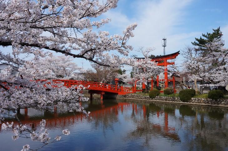 涼ヶ岡八幡神社