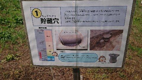 浦尻貝塚6