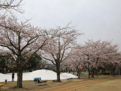 二ツ沼総合公園 - 広野町