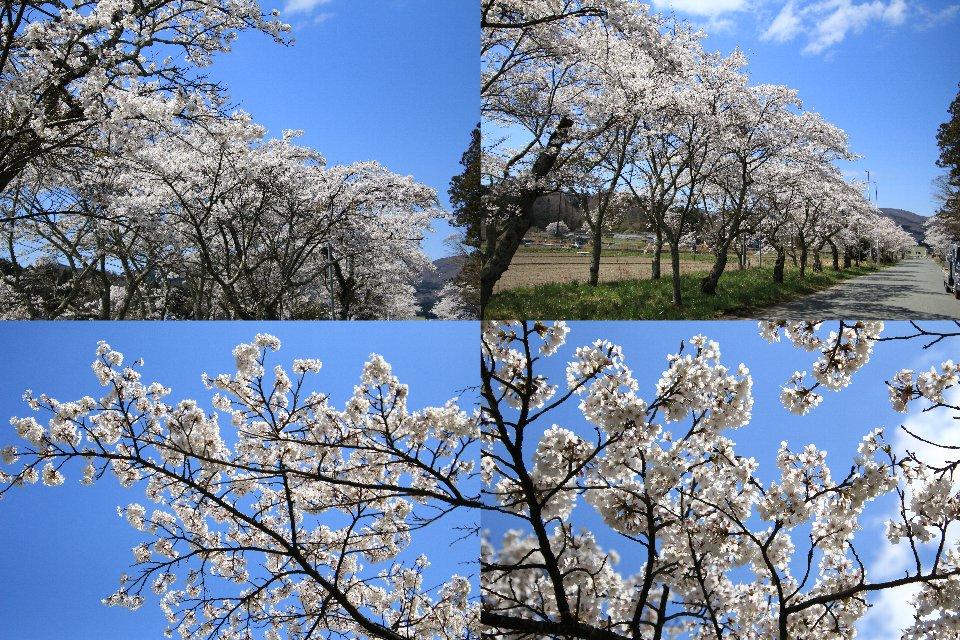 大雷神社 - 飯舘村