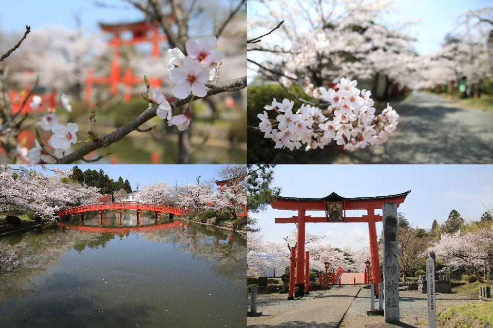 涼ヶ岡八幡神社 - 相馬市