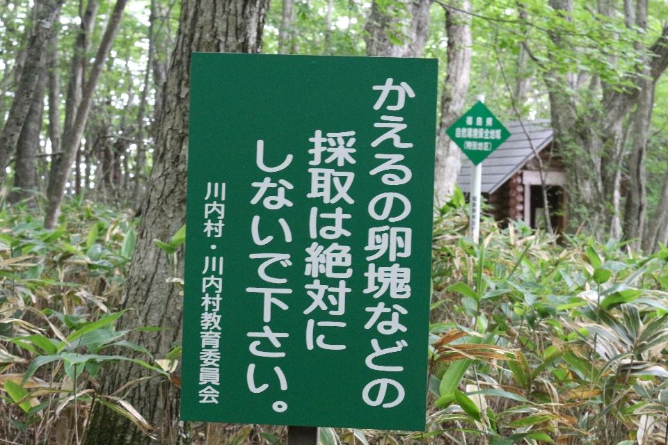 平伏沼 - 川内村9
