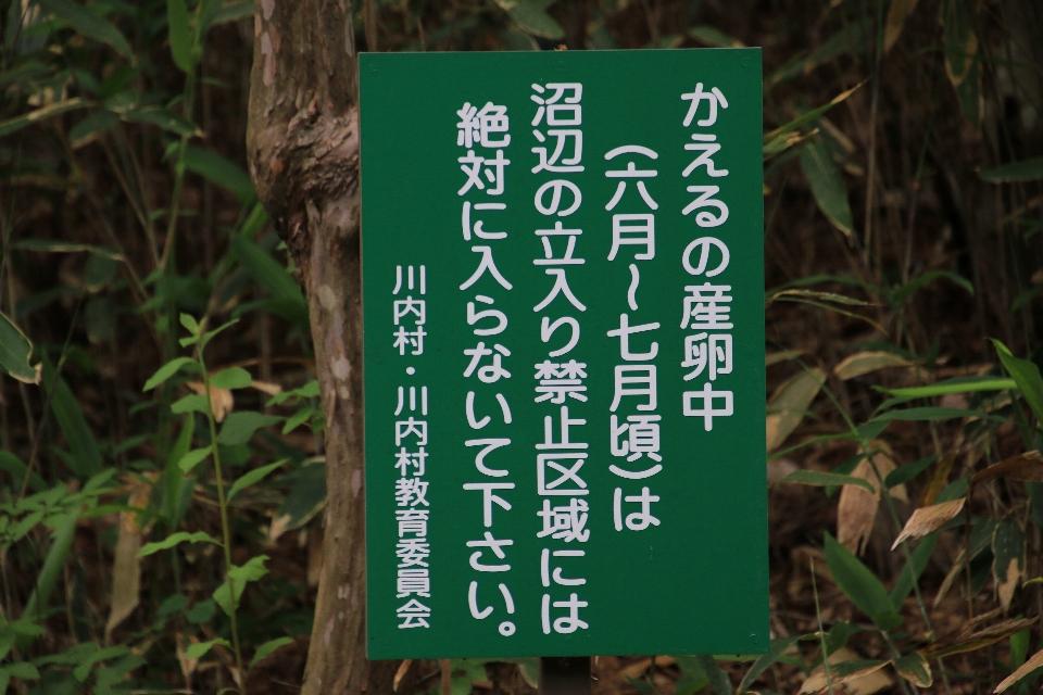 平伏沼 - 川内村2