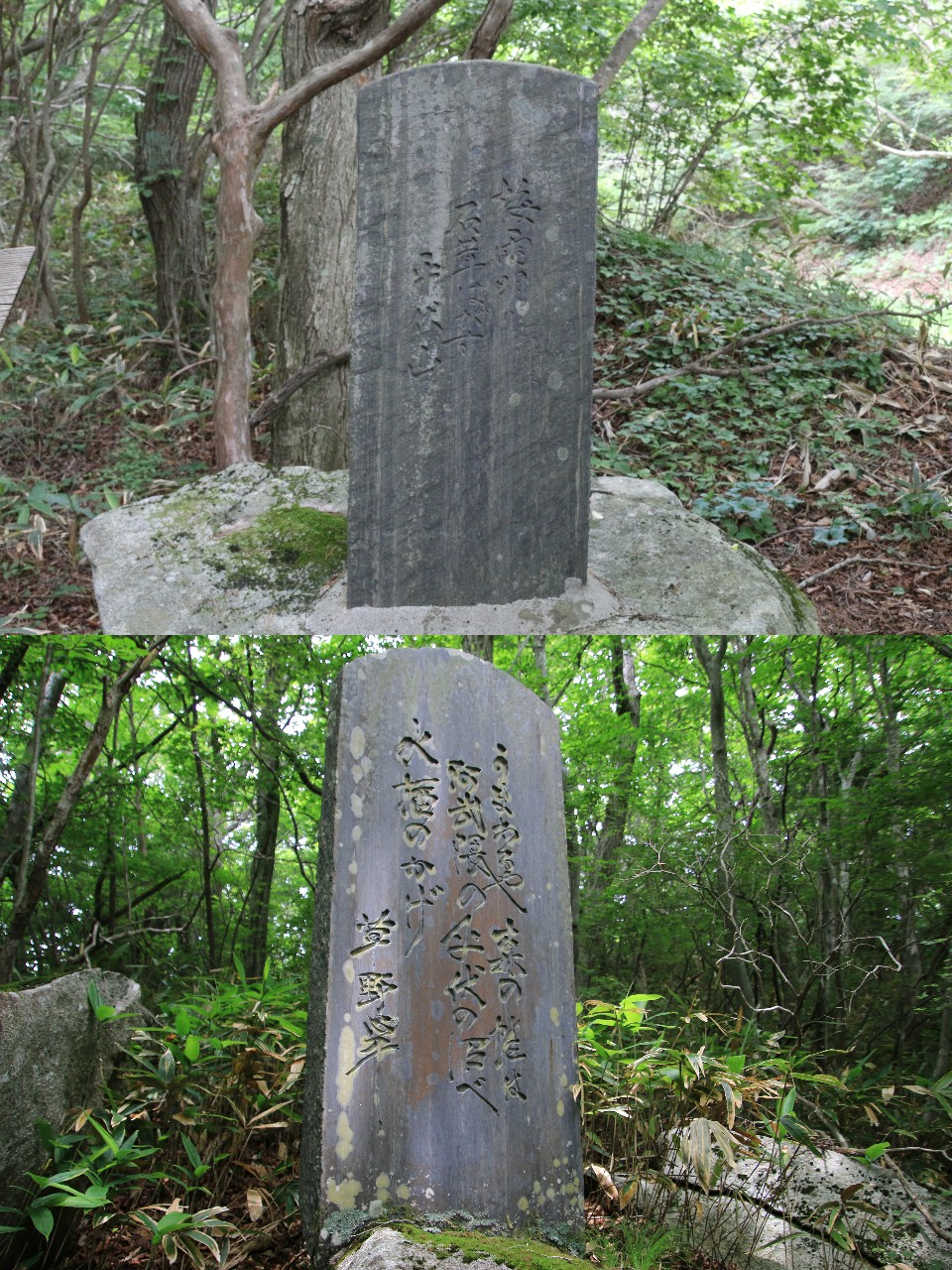平伏沼 - 川内村13